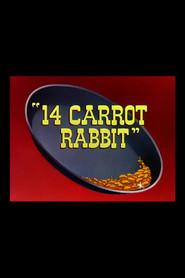 14 Carrot Rabbit