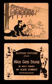 Alice Gets Stung