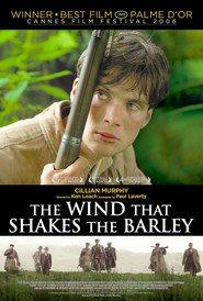 Il vento che accarezza l'erba