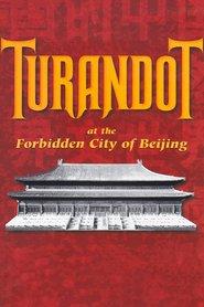 Puccini: Turandot at the Forbidden City of Beijing
