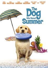 Un'estate da cani - Il ritorno di Zeus