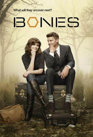 Locandina del film Bones