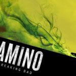 """La guida ai personaggi di """"Breaking Bad"""" che compaiono anche in """"El Camino"""""""