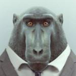 Profile photo of kerrinskers