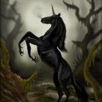 Foto del profilo di darkunicorn