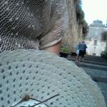 Foto del profilo di lillaby