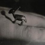 Foto del profilo di gott
